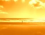 Ocean of Light - wie sich aus der Stille heraus dein einzigartiger Lebenszweck entfaltet
